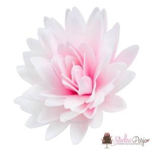 Dekoracja na tort kwiat Aster peoniowy cieniowany róż - 1 szt