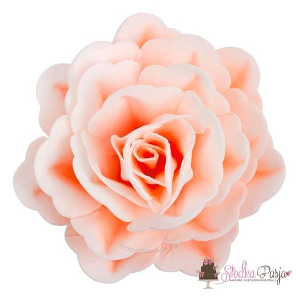 Dekoracja na tort kwiat róża chińska cieniowana łososiowawaflowa - 1 szt