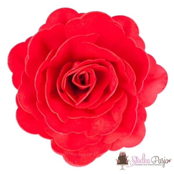 Róża chińska czerwona waflowa dekoracja na tort - 1 szt