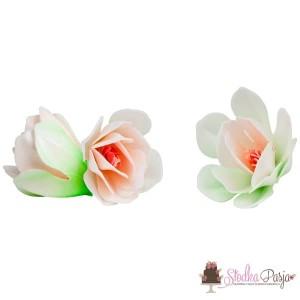 Dekoracja na tort kwiaty Magnolia biała - 6 szt