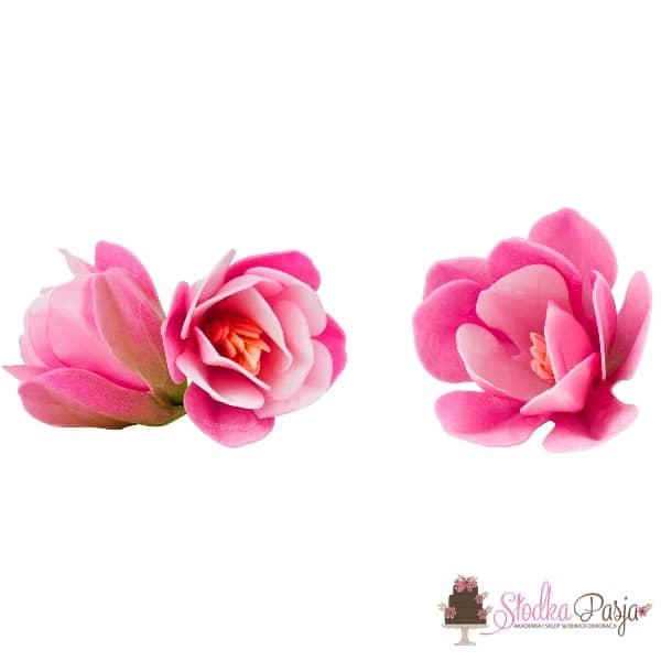 Dekoracja na tort kwiaty Magnolia cieniowany - różowy- 6 szt