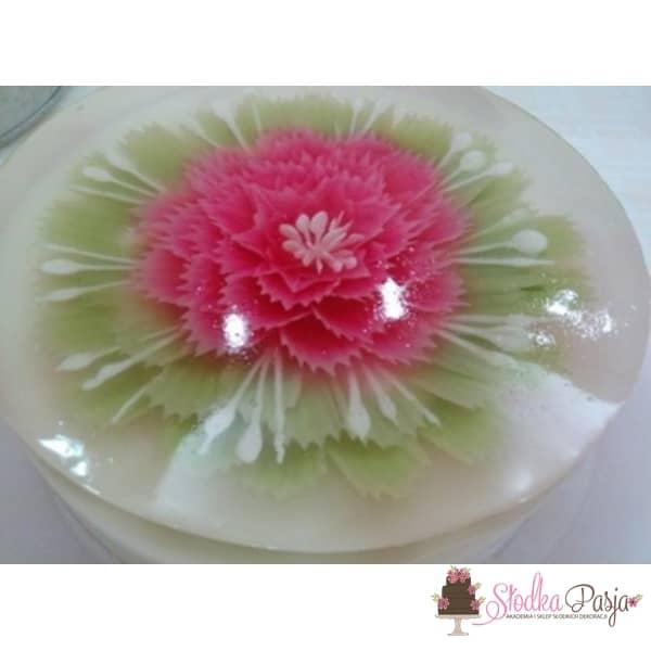 Zestaw stalówek do kwiatów 3 D w galaretce