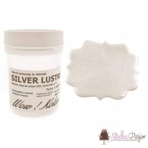 Brokat spożywczy Wow Kolor srebrny - Silver Lustre