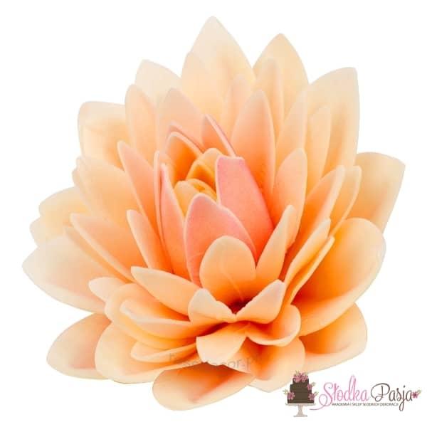 Dekoracja na tort kwiat Dalia pudrowa waflowa